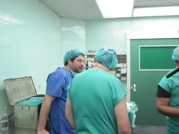 Consultation on Urethral Stricture Disease, Workshop Belgrade, October ...